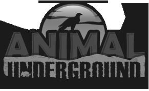 Animal Underground