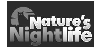 Nature's Night Life