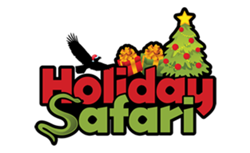 Holiday Safari